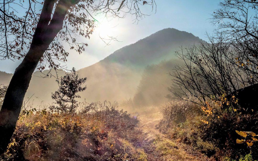 広島県山県郡安芸太田町小板の景色・風景 2018-11-11 08:28