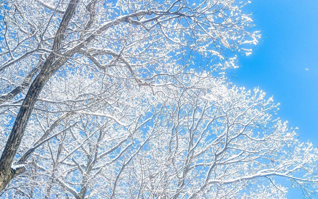 広島県山県郡安芸太田町小板の景色・風景 2018-12-15 09:46
